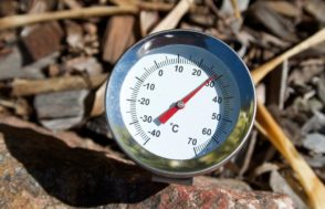 Silver spike dial thermometer | Beef Breeding Services